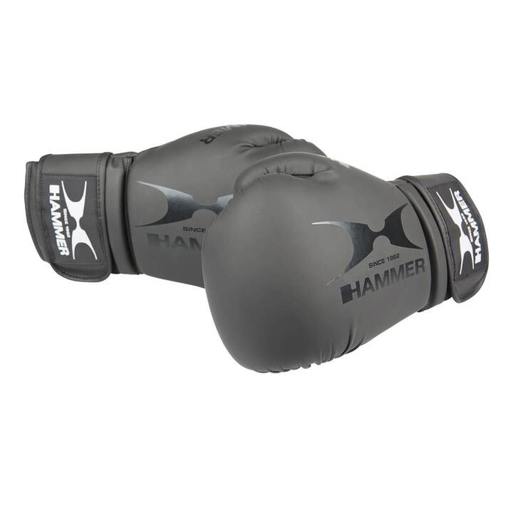 HAMMER Gants de boxe Hawk (10 oz)