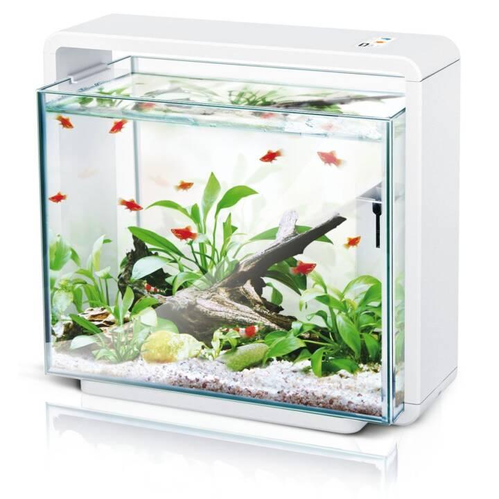 AMAZONAS Aquarium E40 (34 l)