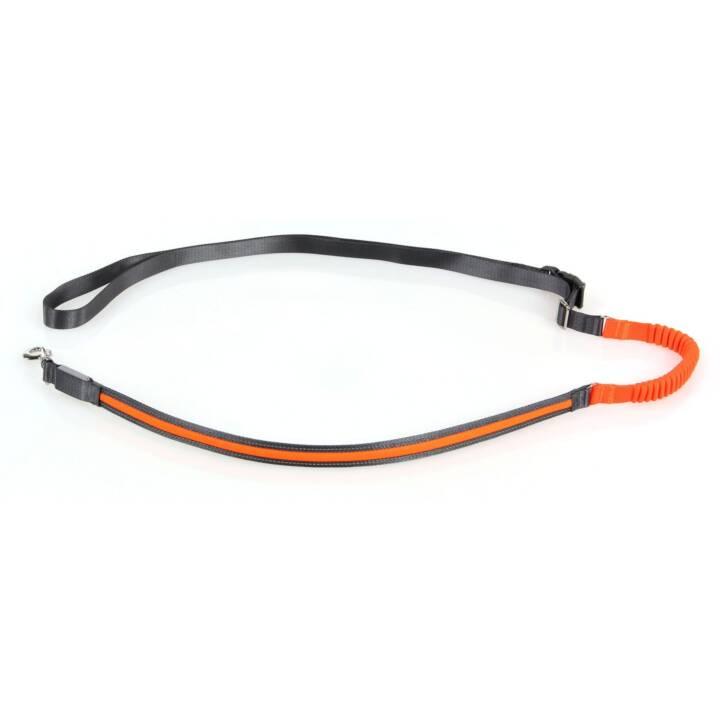 SWISSPET Leine Spira (Orange)