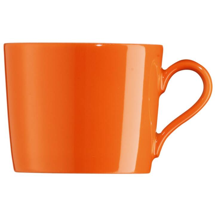 ARZBERG-PORZELLAN tazza di caffè fresco 0,21 l