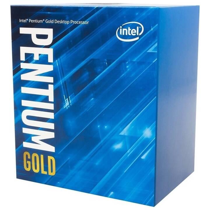 INTEL Pentium Gold G5620 (LGA 1151, 4 GHz)