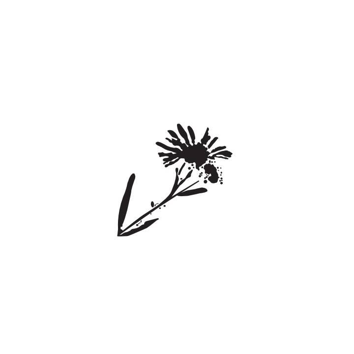 Semelles GLOREX Relief Semelles intérieures Fleur