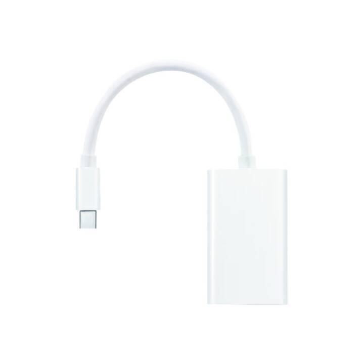 PURELINK Mini DP + Adaptateur Tonnerre sur VGA 10 cm