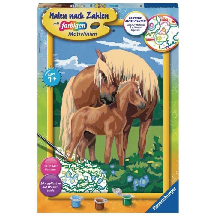 MnZ Liebevolle Pferde Serie C