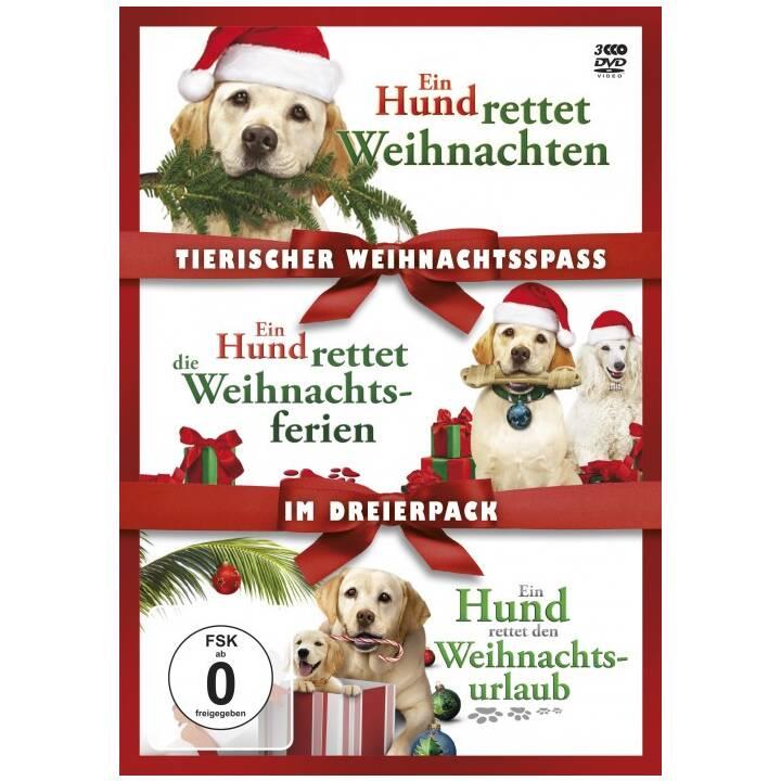 Tierischer Weihnachtsspass im Dreierpack (DE, EN)