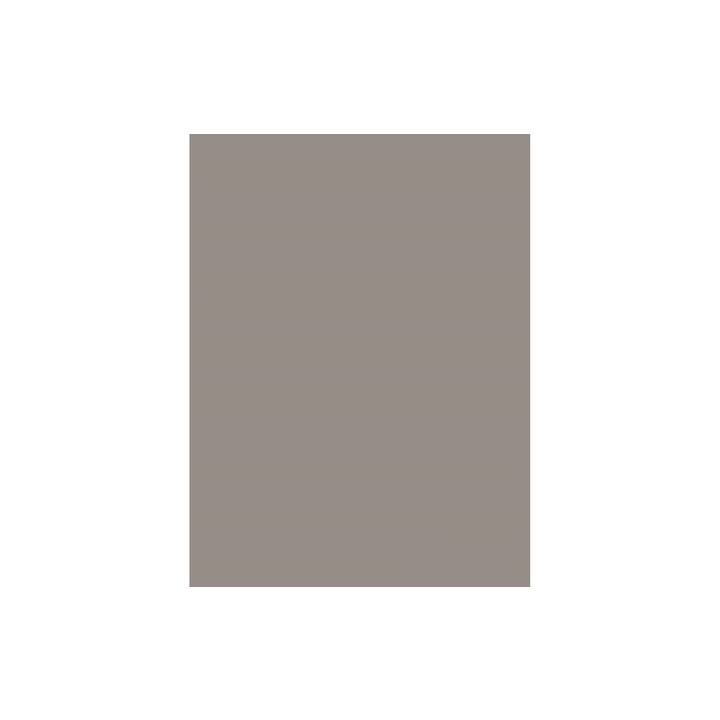 SAVAGE Sfondo foto (Grigio, 2.72 x 11 m)