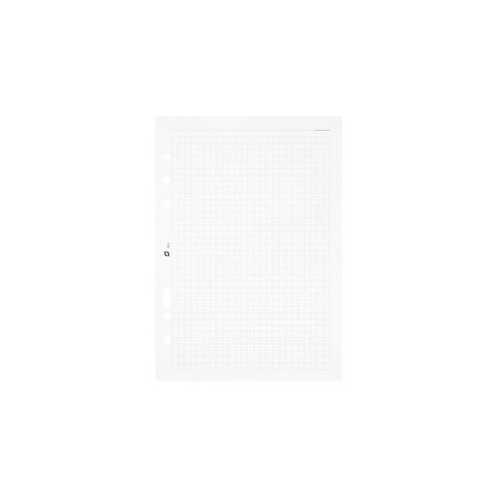 SUCCES Notizpapier A5, kariert, weiss, 100 Blatt