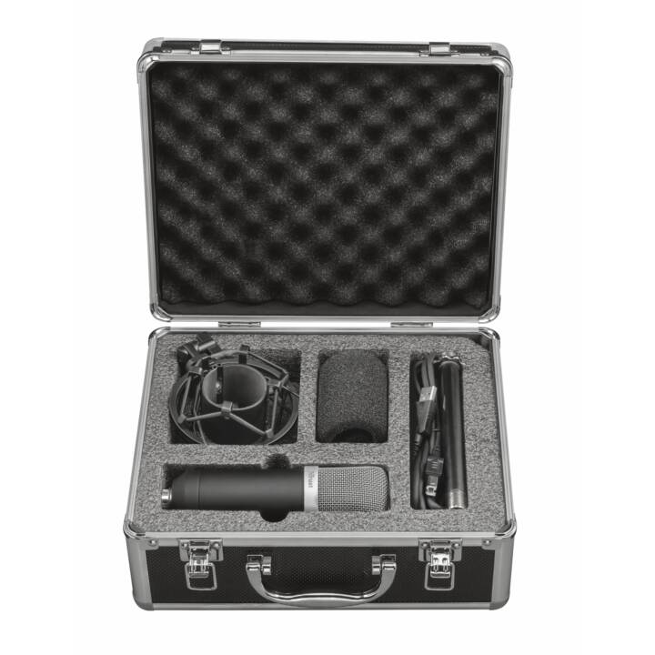 TRUST GXT 252 Emita Streaming Microphone studio (Argent, Noir)