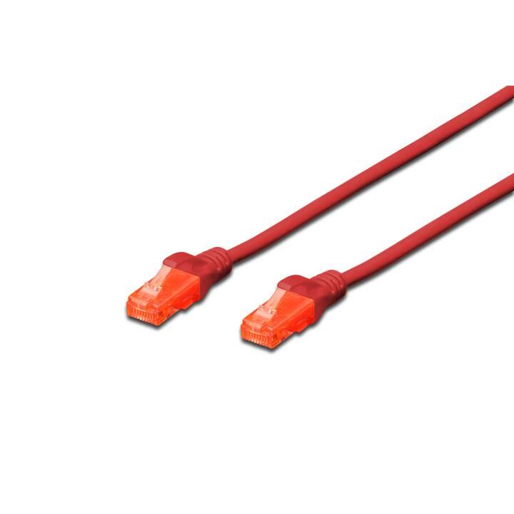ASSMANN DK-1617-010/R Câble réseau (RJ-45, 1 m)