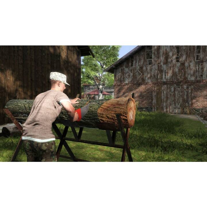 BIGBEN INTERACTIVE Farmer's Dynasty, PlayStation 4