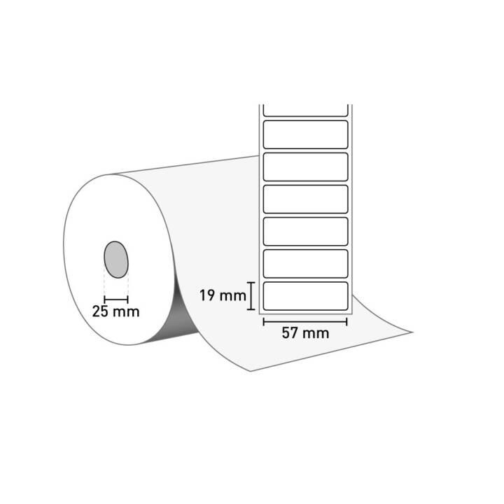 Etichette ZEBRA Z-Select 2000D, 800262-075, 39780 pezzi
