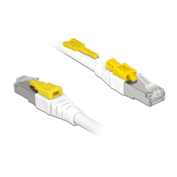 DELOCK Câble réseau (RJ-45, 0.5 m)