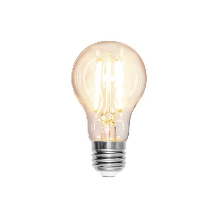 STAR TRADING LED Birne (E27, 8 W)