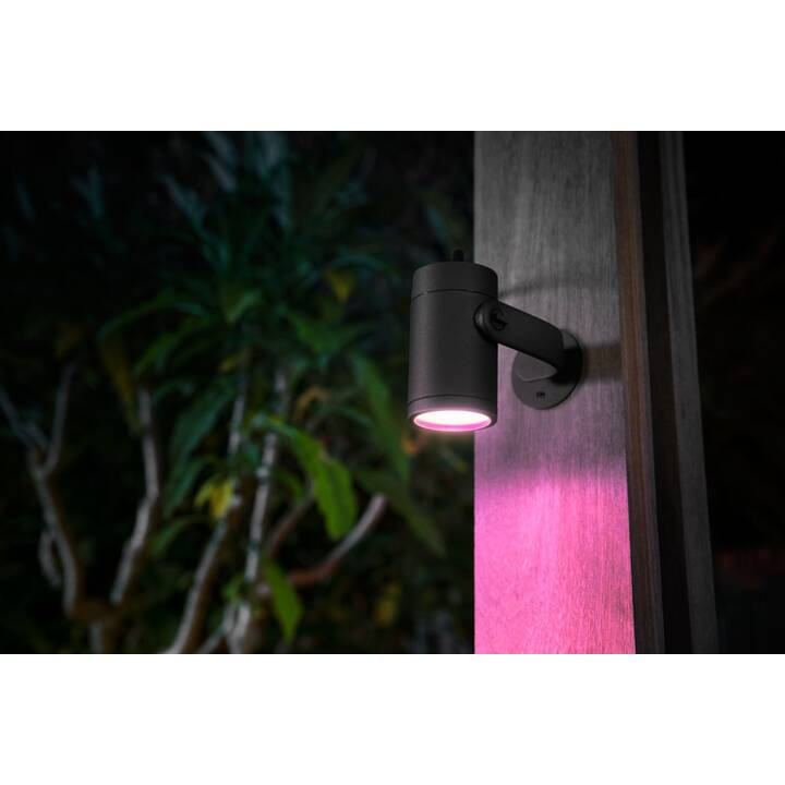 PHILIPS HUE Outdoor-Spot Lily Base (LED incorporé, 8 W, Anthracite)