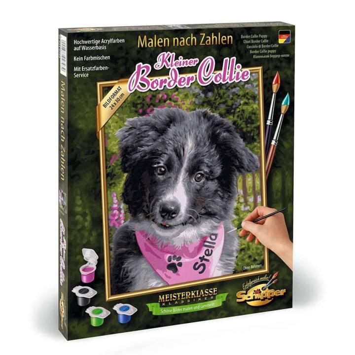 SCHIPPER Malen nach Zahlen Border Collie Puppy