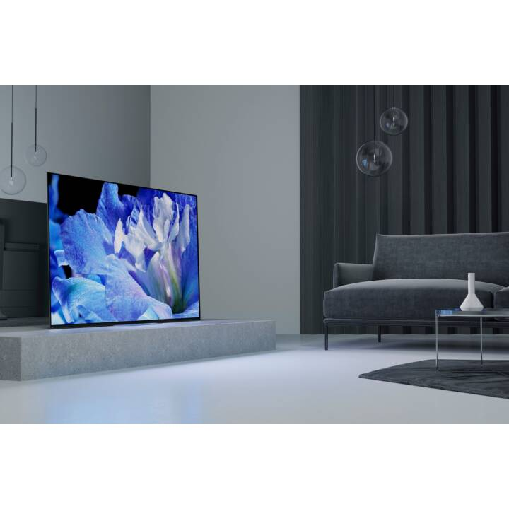 "SONY Smart TV KD55AF8BAEP (55"", OLED, Ultra HD - 4K)"