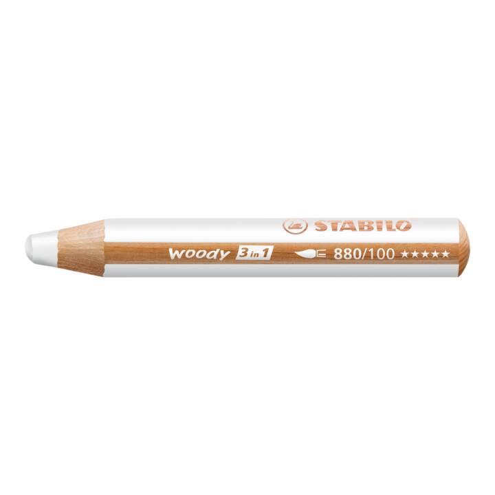 Crayon de couleur STABILO Argent boisé