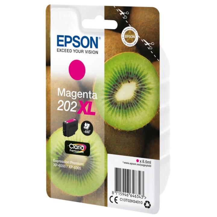 EPSON cartouche simple 202 XL Magenta