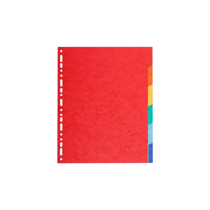 BIELLA Top Color Register Farblich (A4)