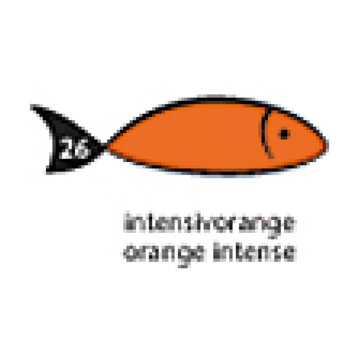 PAPYRUS Carta arcobaleno A3 160g arancione 250 fogli