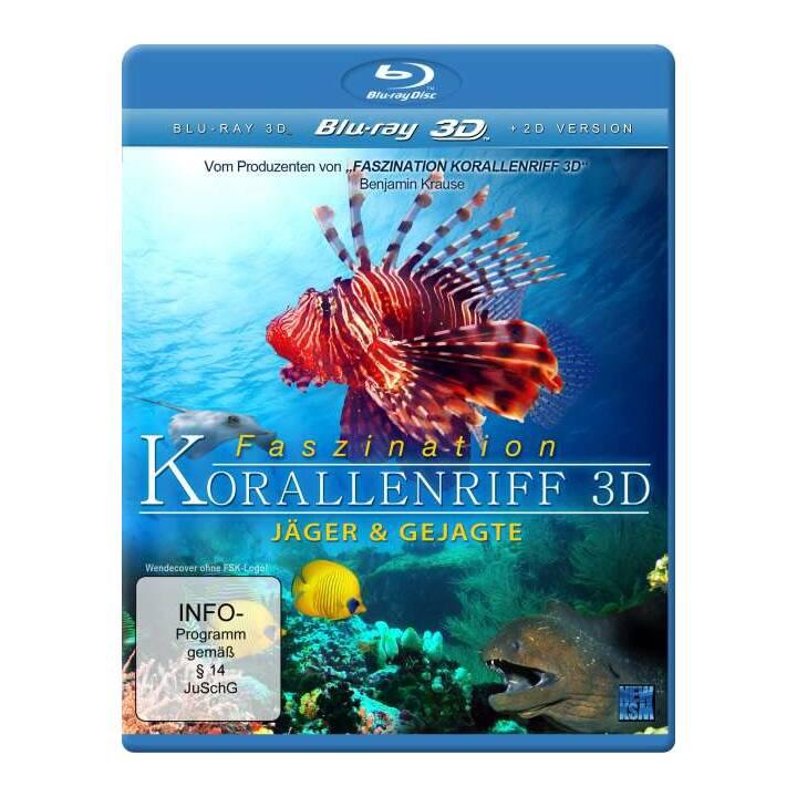 Faszination Korallenriff - Jäger und Gejagte (DE, EN)