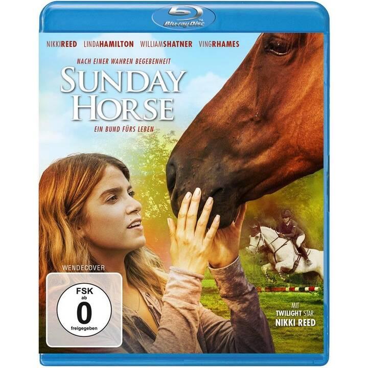 Sunday Horse (DE, EN)