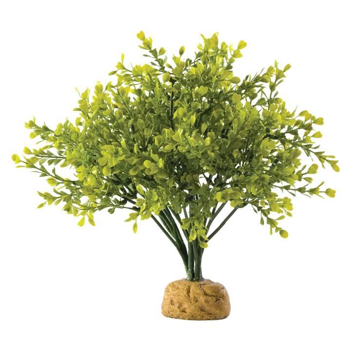 EXOTERRA Plante artificielle Boxwood Bush (Plastique)