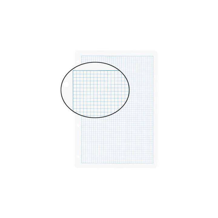 BIELLA Foglio di input (A4, Quadrettato, 100 pezzo)