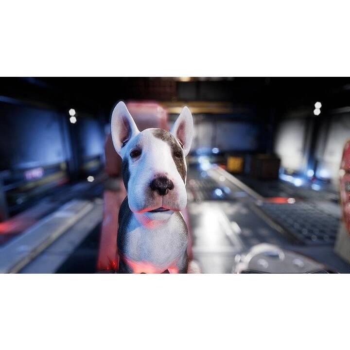 Dog Patrol - Das gefallene Königreich der Knochen (DE, EN)