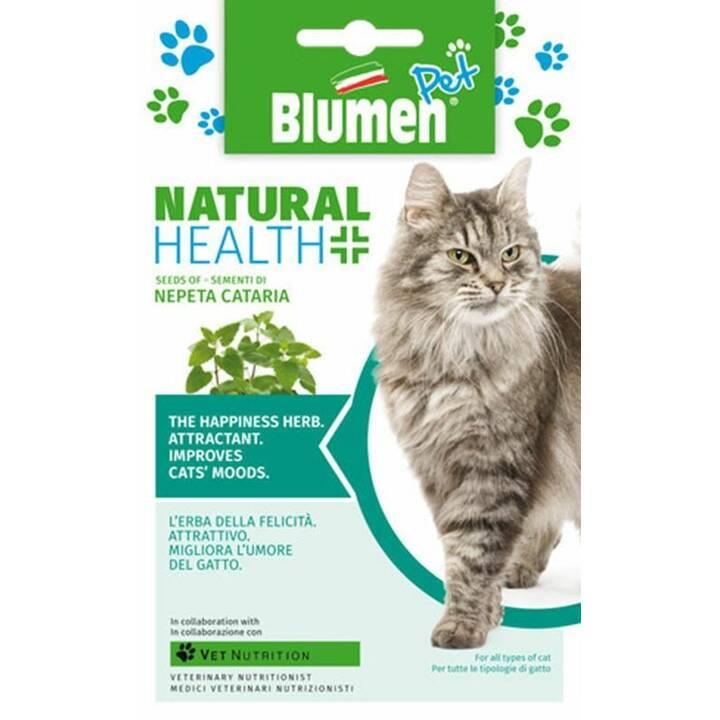 BLUMEN Cataire Natural health (7 g)