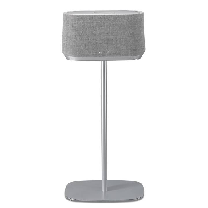 SOUNDXTRA Support sur pieds (Harman Kardon Citation 500, Gris)