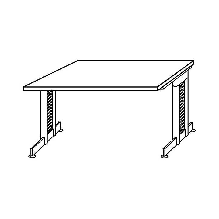 OFFICE AKKTIV Nicola (Silber, Grau, 160 cm x 80 cm x 72 cm)