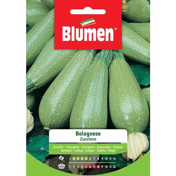 BLUMEN Zucchini Bolognese (10 g)