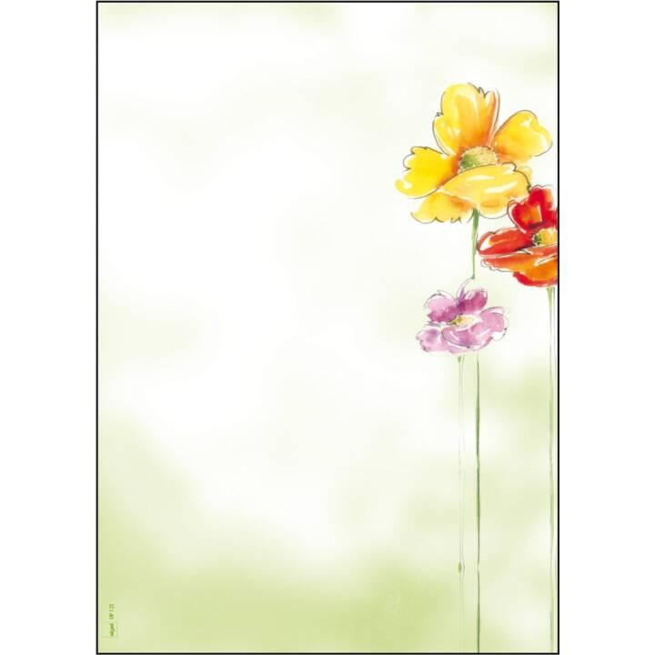 Carta SIGEL Design, 50 fogli, A4, 90 g/m².