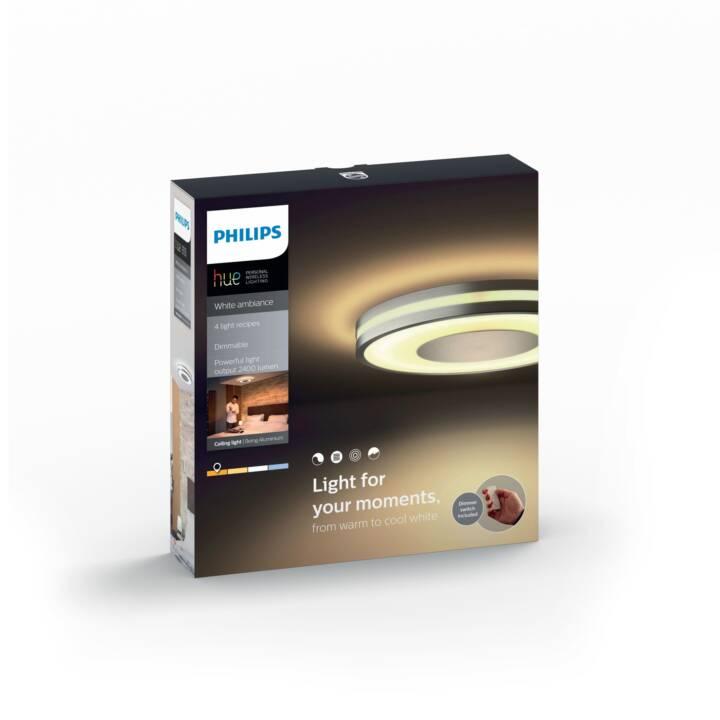 PHILIPS hue Being 3261048P7 (Argento)