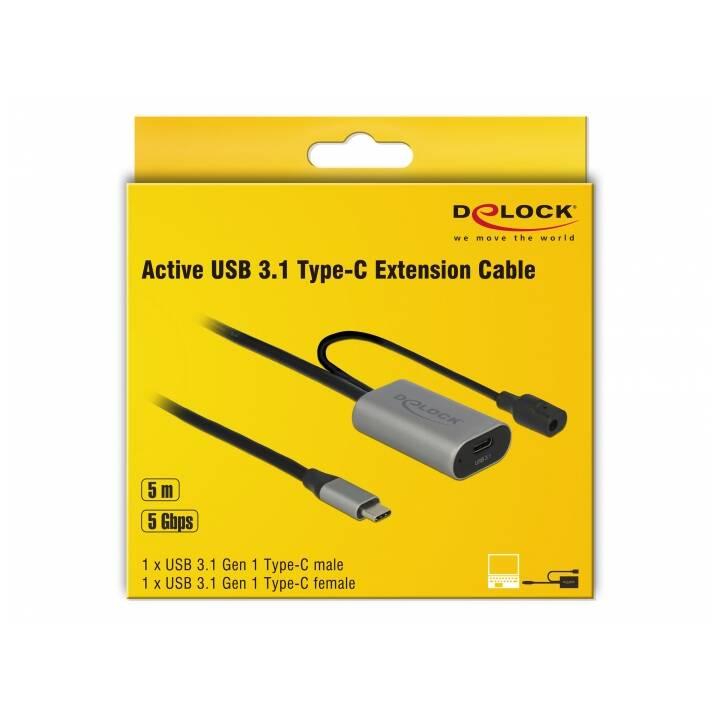 DELOCK Câble de connexion (Prise USB 3.1 de type C, Fiche USB 3.1 de type C, 5 m)