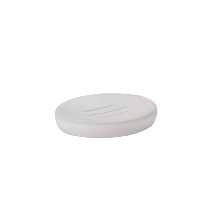 ZONE Soap Dish Soft White