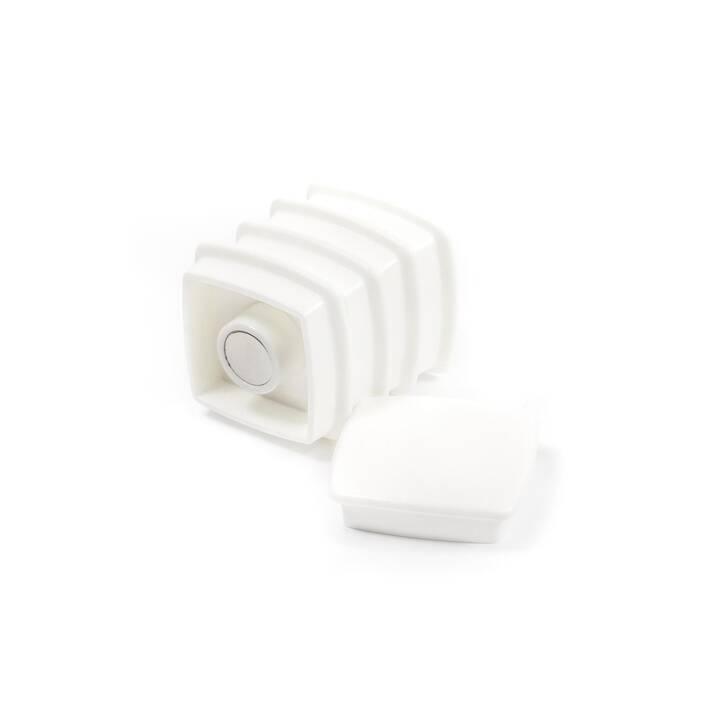 SUPERMAGNETE Neodym Magnet (5 Stück)