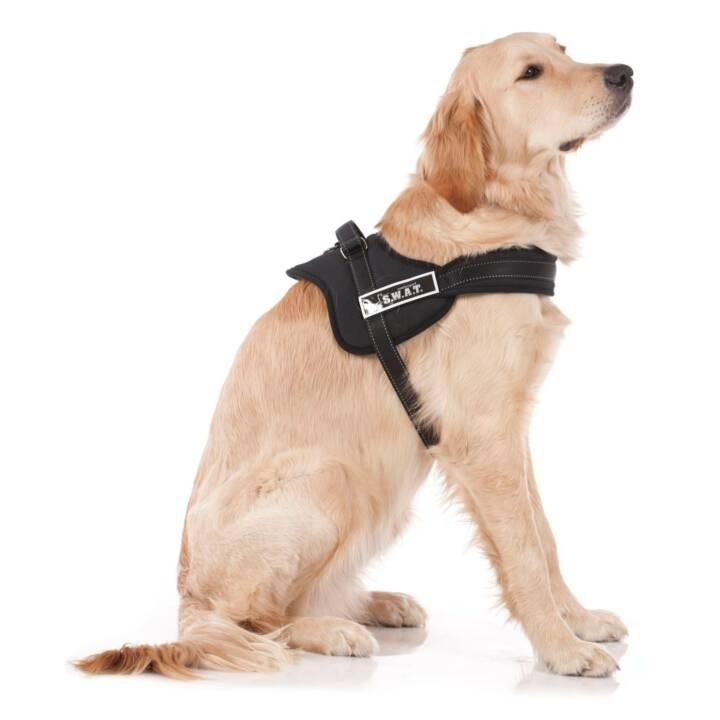 SWISSPET Harnais Hundegeschirr Dog-S.W.A.T, S (Petit, Noir)