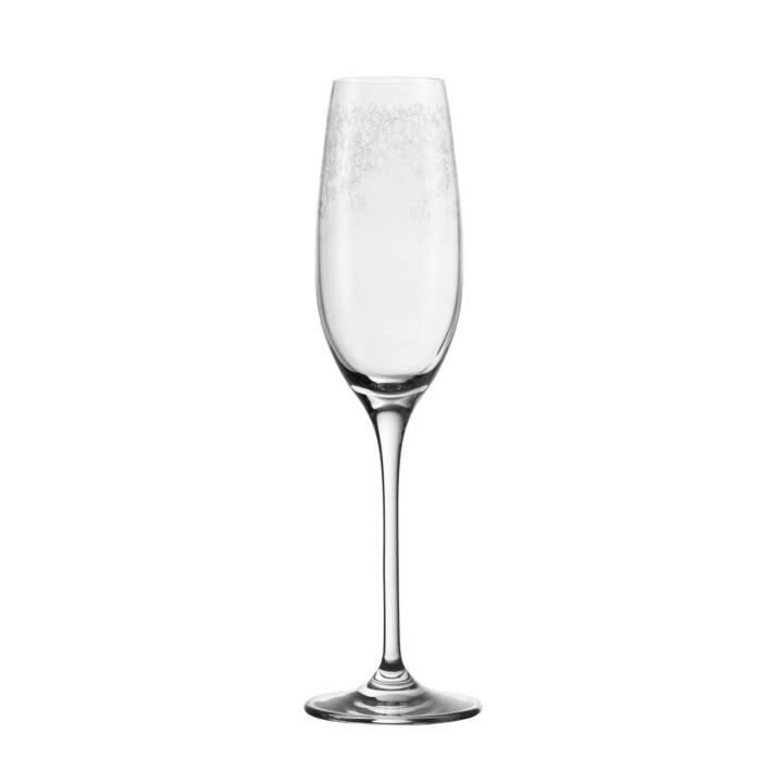 Set bicchieri champagne LEONARDO Chateau 2 dl, 6 pezzi