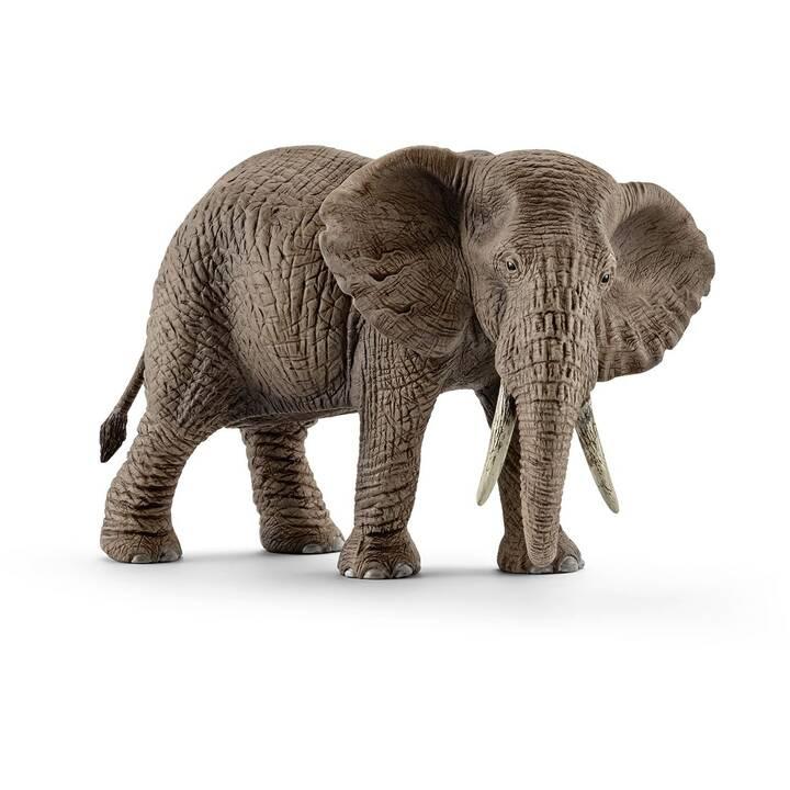 SCHLEICH Wild Life Afrikanische Elefantenkuh (1 pièce, Gris)