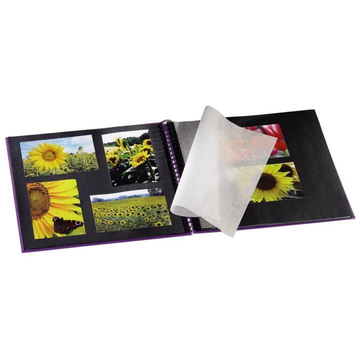 Album spirale HAMA Fine Art, violet, 360 x 320 mm