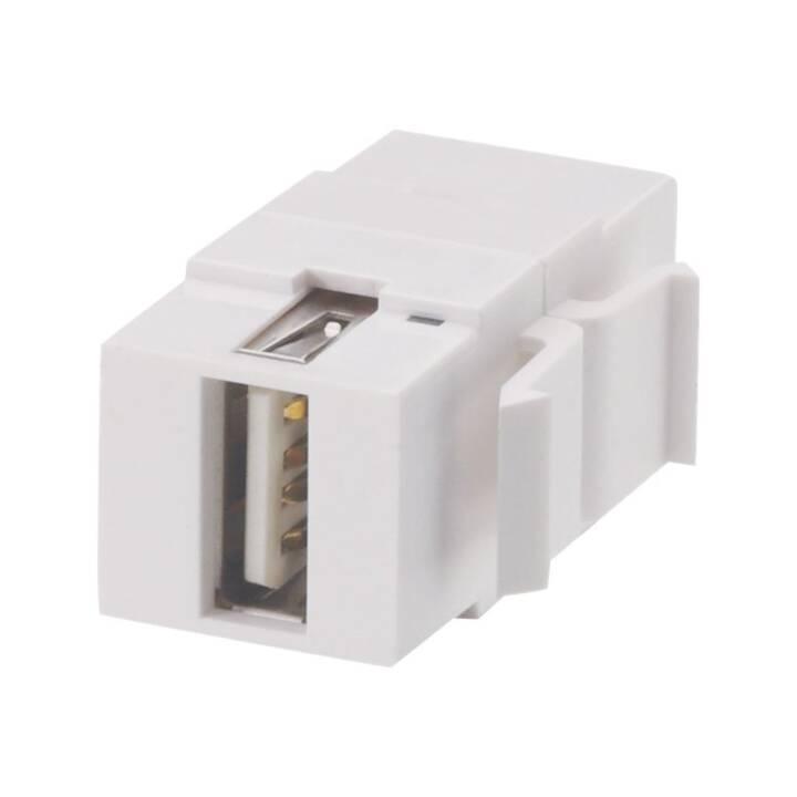 LINDY Modular AV Face Plate System Snap-in Keystone module - Modular Input