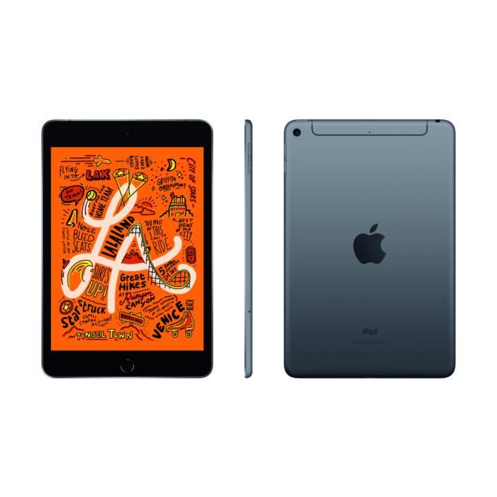 """APPLE iPad mini Wi-Fi + Cellular 2019 (7.9"""", 256 GB, Gris sidéral)"""
