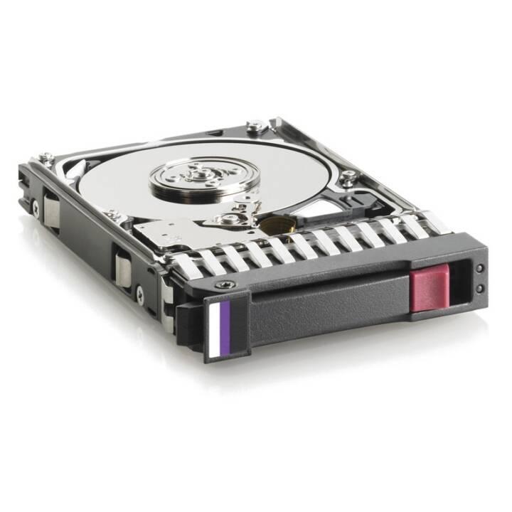 HP (SAS, 10000 GB, Schwarz, Silber)
