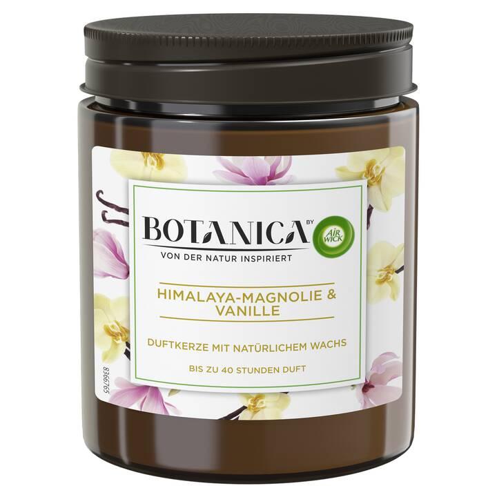 AIR WICK Botanica Candele profumate (1 pezzo)