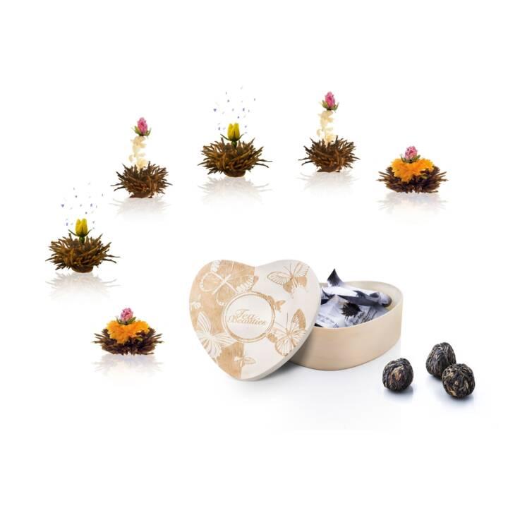 CREANO Erblüh Thé noir (Fleur du thé, 6 pièce)