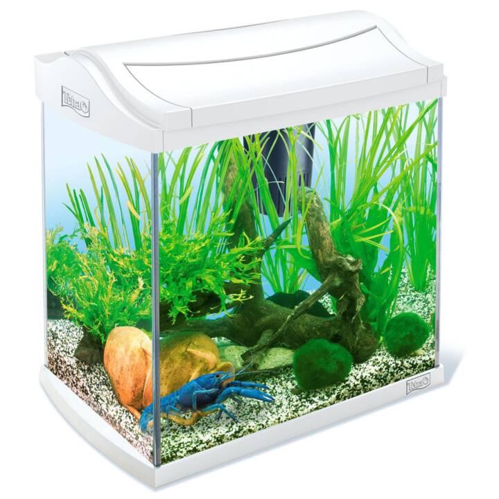 TETRA Aquarium AquaArt Discovery Line (30 l)