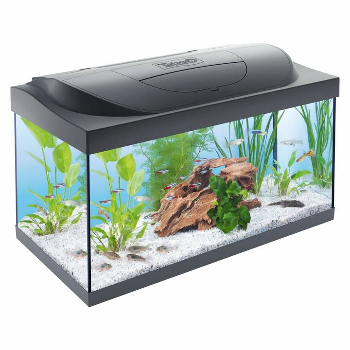 TETRA Aquarium Starter Line LED (54 l)
