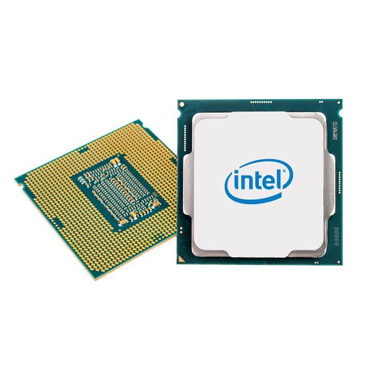 INTEL Xeon E E-2274G (LGA 1151, 4 GHz)